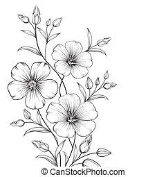 Linum flower isolated over white background. Vector ...