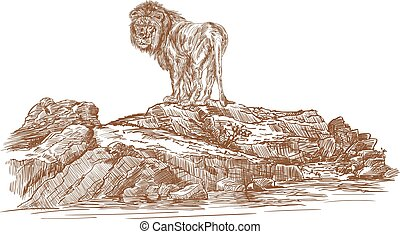 Lion and rocks ,vector