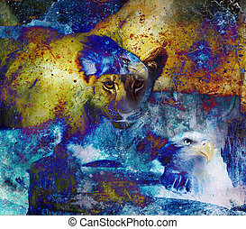 Lion cub photos and eagle painting Abstract Collage. Eye contact. Abstract structure background.