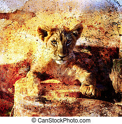 Lion cub photos and painting Abstract Collage. Eye contact. Abstract structure background.
