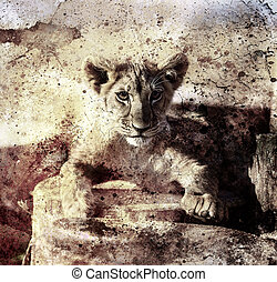 Lion cub photos and painting Abstract Collage. Eye contact. Sepia vintage picture