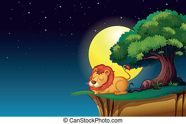 lion - illustration of a lion in a dark night
