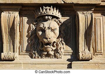 Lion Facade Palazzo Pitti Florence