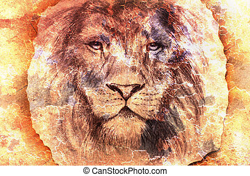 lion face on colorful abstract background, eye contact