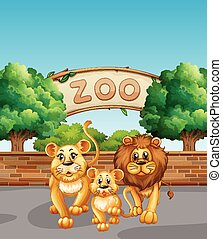 Lion family in the zoo