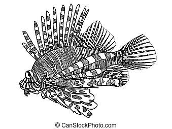Lion fish coloring page - Lion fish line art design for ...