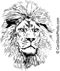 lion, grand, crinière