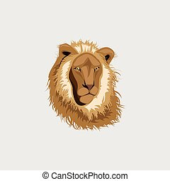 Lion head illustration ,vector