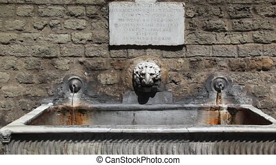 Lion head in center of two old water source - lion head in...