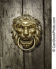 lion head on the   door