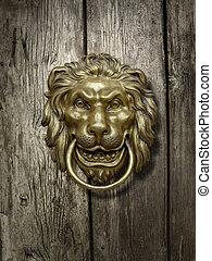lion head on the   door