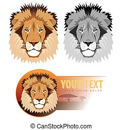 Lion head. Vector illustration