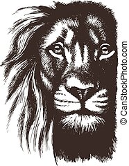 Lion head vector sketch
