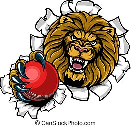 Lion Holding Cricket Ball Breaking Background
