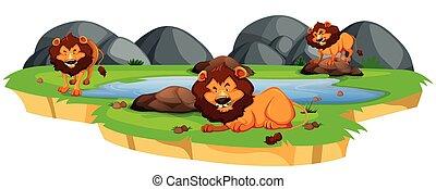 Lion in nature landscape
