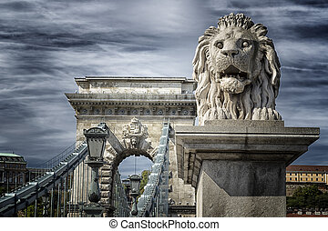 Lion of the Chain Bridge in Budapest - A view of the Lion...