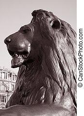 Lion part of Nelsons Column Monument in Trafalgar Square, London, England, UK