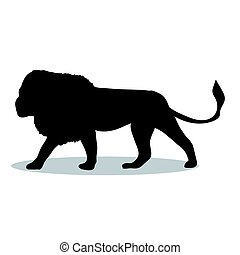 Lion predator black silhouette animal