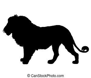 lion, silhouette