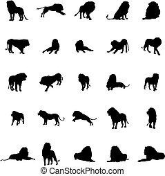 Lion silhouette set
