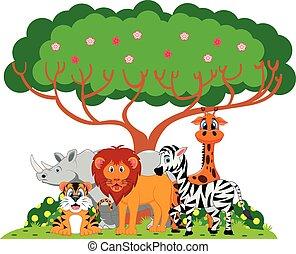 Lion, tiger, zebra, rhino, giraffe