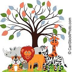 Lion, tiger, zebra, rhino, girraffe