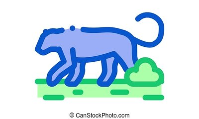 lion wild animal Icon Animation. color lion wild animal animated icon on white background