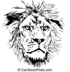 Lion with little mane in vectorial format
