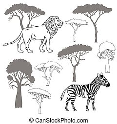 Lion, zebra and savanna trees