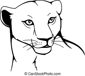 lioness clipart and stock illustrations 908 lioness vector eps rh canstockphoto com lioness head clipart lioness clipart black and white