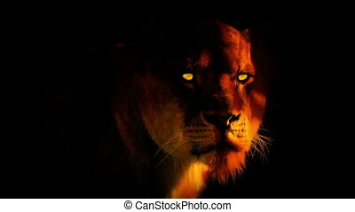 Lioness face with glowing eyes and fire composite