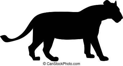 lioness clipart and stock illustrations 862 lioness vector eps rh canstockphoto com lioness clipart black and white lions clip art free