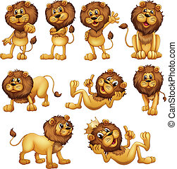 Lions in different positions - Illustrations of the lions in...