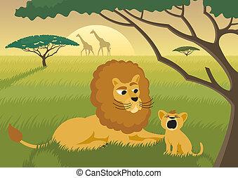 lions, sauvage