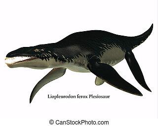 Liopleurodon Side Profile