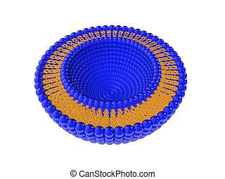 Liposome Bi-layer Structure 3D Illustration - Medical 3D...