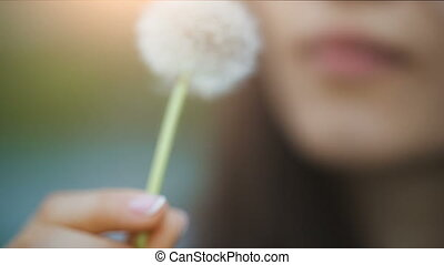 Lips of a woman Blowing on a Dandelion - Woman blowing...