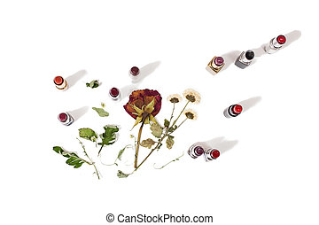 Lipstick isolated on white background. Dried flowers, roses lay on a white background, female lip pencil. Color lipstick.