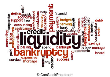 Liquidity word cloud concept on white background