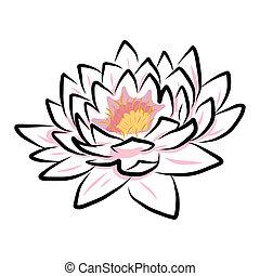 lirio, flor, loto, mano, agua, dibujo