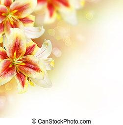 lirio, flores, verano, frontera, design.