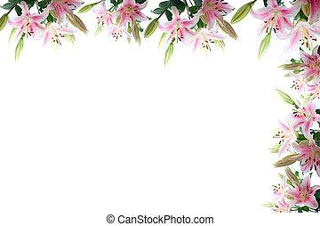 cadre fleurs lis composition copyspace sur cadre photos de stock rechercher des. Black Bedroom Furniture Sets. Home Design Ideas