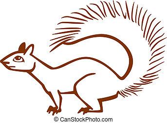 lis, wiewiórka