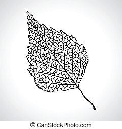 list, isolated., makro, strom, čerň, bříza
