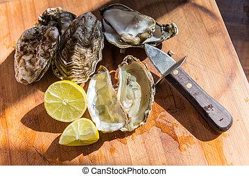 listo, ostras, comer