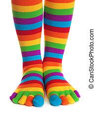 listrado, coloridos, meias