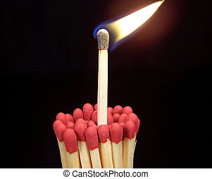 Close up color photograph of a lit wooden kitchen match sticking up from a group of unlit matches. Black background.