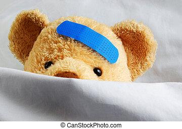 lit, teddy