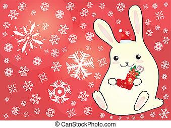 liten, söt, kanin
