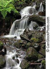 liten, vattenfall